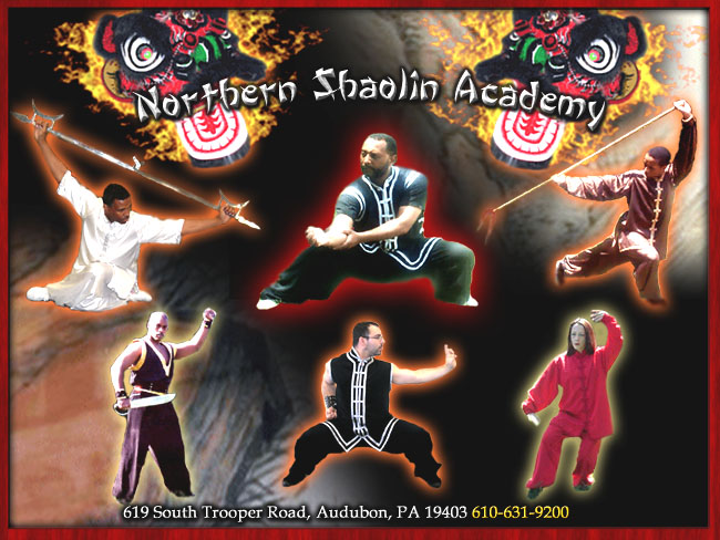 Northern Shaolin Tai Chi & Kung fu Academy Photo