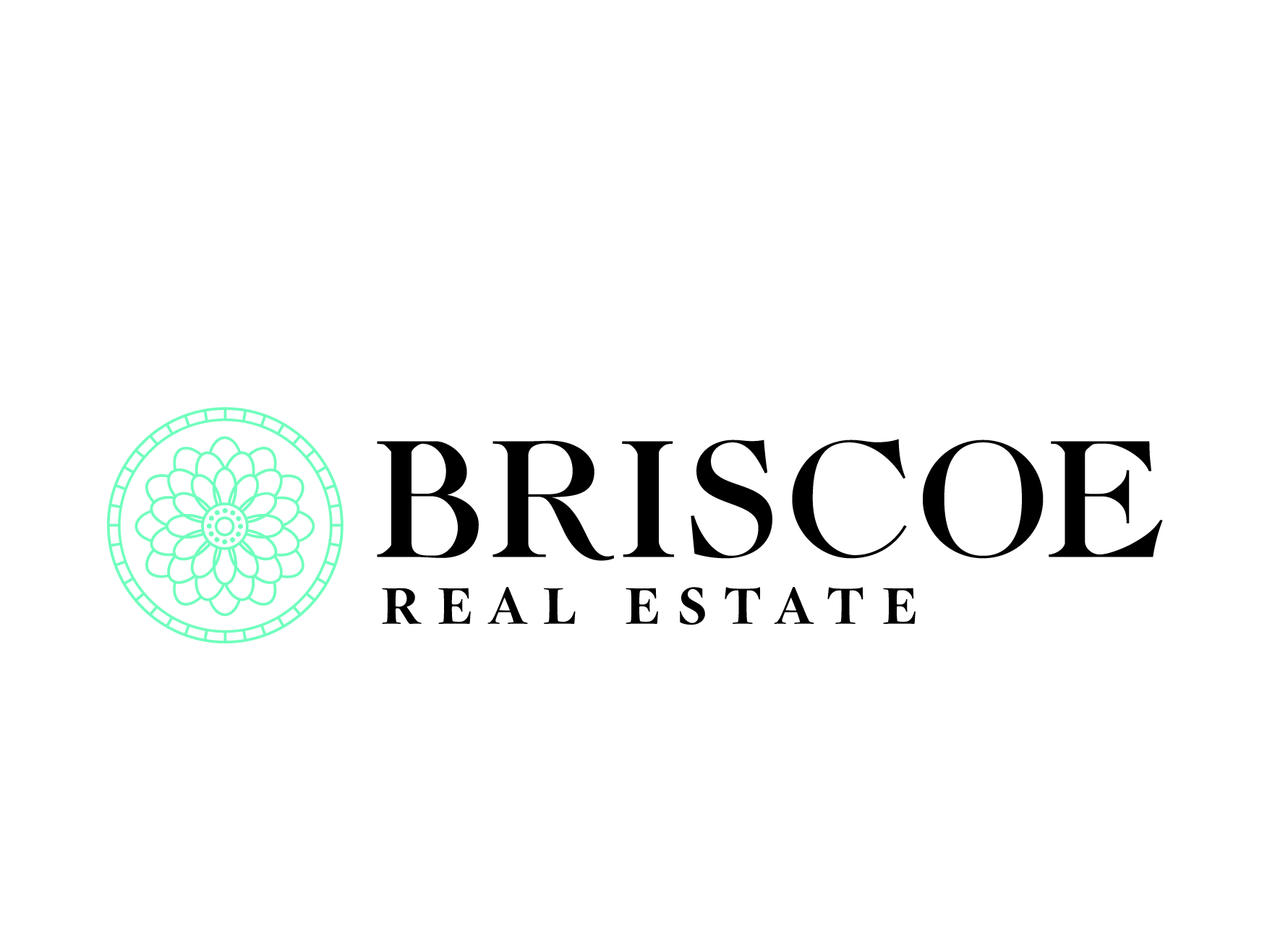 BRISCOE REAL ESTATE Photo