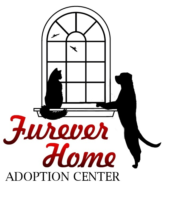 Furever Home Adoption Center Photo