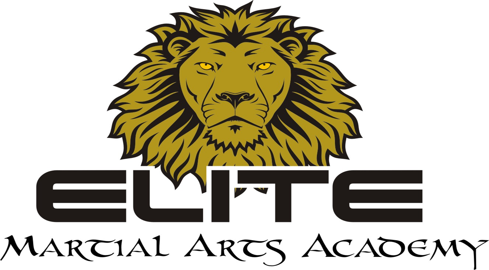 Elite Martial Arts Academy Photo