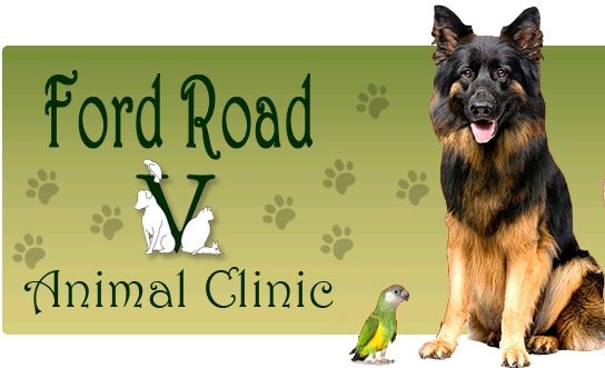 Ford Road Animal Clinic Photo